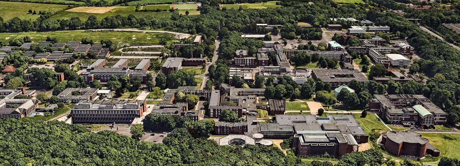 University of Sussex in Brighton