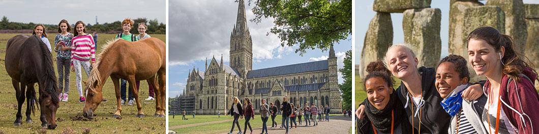 New Forest | Salisbury | Stonehenge